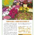 北町逸ピン!vol.24 板橋陶苑 季節の花苗・鉢花