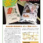 北町逸ピン!vol.22 塩野米穀店の新潟産コシヒカリ